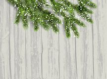 Fir tree background. Green fir tree branches on wood backdrop. Natural design elements. Winter background with place for text Stock Photography