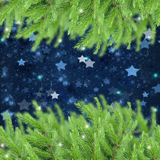 Fir tree boders  with stars Stock Image