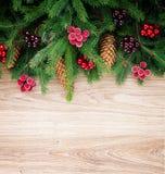 Fir tree border Royalty Free Stock Photo