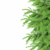 Fir tree border. Low poly illustration fir tree border isolated on white background Stock Photo