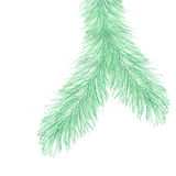 Fir tree branch. Background element for winter season decoration Stock Photo