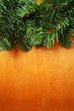 Fir tree branch Royalty Free Stock Photo