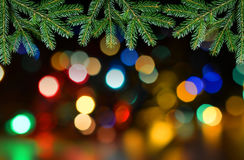 Fir tree branch with colorful lights bokeh. Royalty Free Stock Photo
