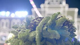 Fir Tree Branch and Cones. Snowy spruce branch with fir cones against illuminated building in the city background. Christmas holiday concept stock video footage