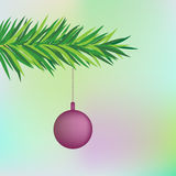 Fir tree background. Fir tree branch with decoration Stock Images