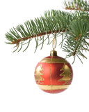Fir tree branch with decoration Royalty Free Stock Image