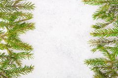 Fir tree branch and snow Royalty Free Stock Images