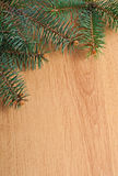 Fir-tree branch on wood Royalty Free Stock Photos