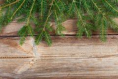 Fir tree branch on wooden board Stock Photo