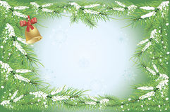 Fir tree branches background Royalty Free Stock Images