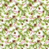 Fir tree branches, candy canes. Seamless pattern for new year design. Watercolor. Fir tree branches and candy canes. Seamless pattern for new year design Stock Images