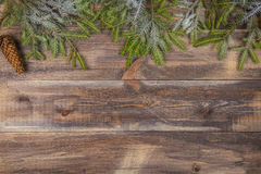 Fir tree branches with cone on wooden background Stock Image