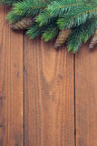 Fir tree branches Stock Photos
