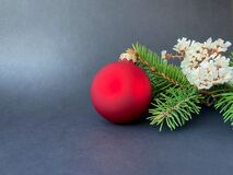 Fir tree branches with decoration on black background. Christmas concept.