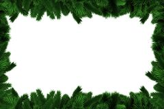 Fir tree branches forming frame. On white background Stock Images