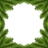 Fir tree branches frame Royalty Free Stock Image