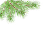 Fir tree branches frame for Christmas decoration. On the white background with place for text Stock Image