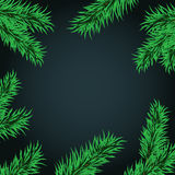 Fir tree branches frame medium large. Christmas and New Year template for greeting in frame of tree branches. The frame of fir  on a dark background vector Stock Photos