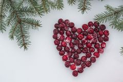 Fir tree branches with heart from frozen red cherries on white snow. Holiday background stock photo