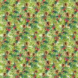 Fir tree branches, mistletoe. Christmas seamless pattern. Watercolor. Background Stock Photography