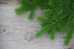 Fir-tree branches on old wooden background Stock Photos