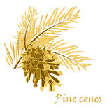 Fir tree branches with pine cone in golden color Royalty Free Stock Photography
