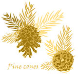 Fir tree branches with pine cone in golden color. Vector illustrations Stock Photography