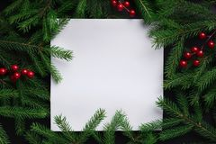 Fir tree branches with red christmas balls frame Stock Image