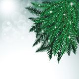 Fir tree branches and snowflakes on colorful background. Christmas vector illustration Royalty Free Stock Photo