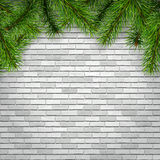 Fir tree branches on a white brick wall background. Christmas background with fir tree branches on a white brick wall, vector illustration Royalty Free Stock Image