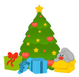 fir-tree with bunny and boxes Royalty Free Stock Photo