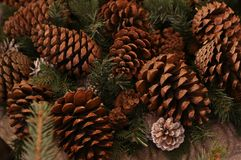 Fir-tree cone forest large brown integer natural rustic background traditional decoration. Fir-tree cone forest large brown integer natural rustic background stock images