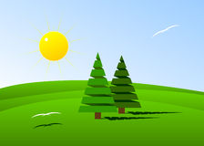 Fir-tree. Couple of fir-trees on hills and two white birds Stock Photography