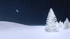 Fir tree covered with hoarfrost at winter night. White fir tree completely covered with hoarfrost under dark night sky with a half moon. Decorative 3D Royalty Free Stock Image