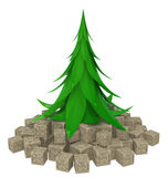 Fir Tree Crates. Fir tree 3d model  with white background Stock Images
