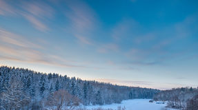 Fir tree forest landscape and sunset sky at snow winter season Stock Images