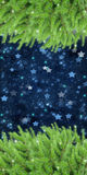 Fir tree frame banner with stars Stock Images