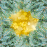 Fir tree frame with golden background Stock Photo
