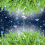 Fir tree frame with stars. Christmas  fir tree frame with stars background Royalty Free Stock Images