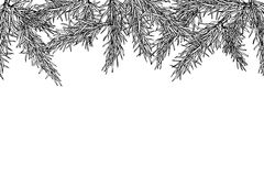 Fir tree hand drawn vector frame for winter and holiday decor. B Stock Photography