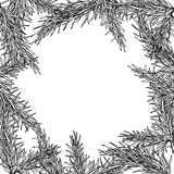 Fir tree hand drawn vector frame for winter and holiday decor. B Royalty Free Stock Photography