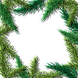 Fir tree hand drawn vector frame for winter and holiday decor.  Royalty Free Stock Photo