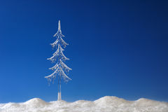 Fir tree from icicle Royalty Free Stock Photo