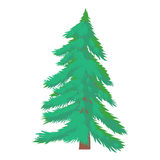Fir tree icon, cartoon style Stock Photography
