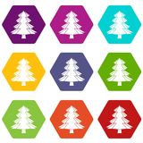 Fir tree icon set color hexahedron. Fir tree icon set many color hexahedron isolated on white vector illustration Royalty Free Stock Images