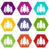 Fir tree icons set 9 vector. Fir tree icons 9 set coloful isolated on white for web Royalty Free Stock Photography