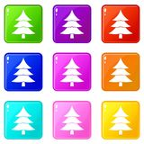 Fir tree icons 9 set. Fir tree icons of 9 color set isolated vector illustration Stock Image