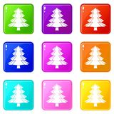 Fir tree icons 9 set. Fir tree icons of 9 color set isolated vector illustration Royalty Free Stock Images