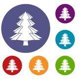Fir tree icons set. In flat circle red, blue and green color for web Royalty Free Stock Image