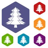 Fir tree icons set hexagon. Isolated vector illustration Stock Images